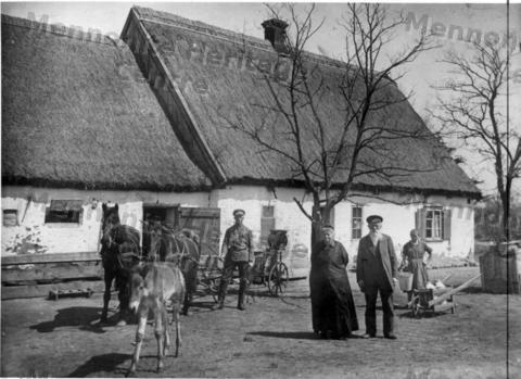 typical mennonite farmstead