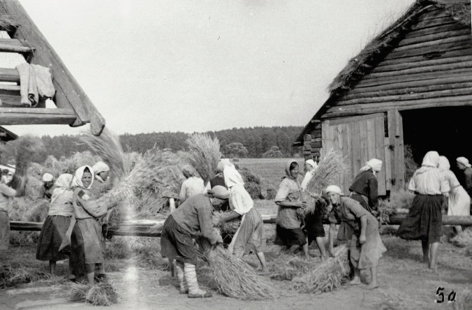 Brining in the harvest on the eastye