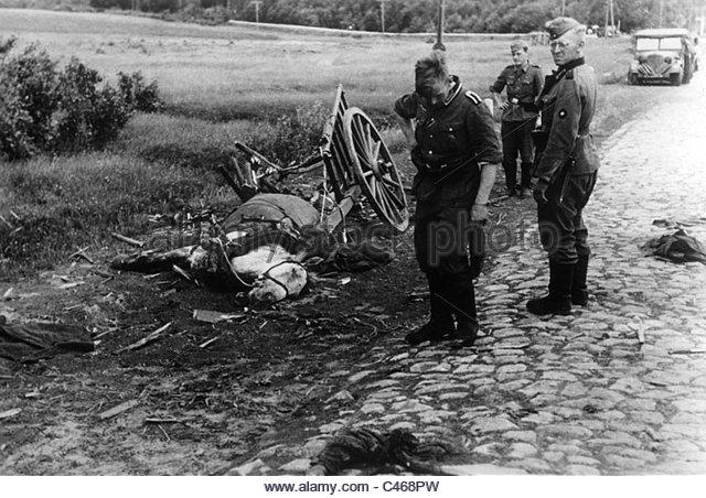 dead warhorse