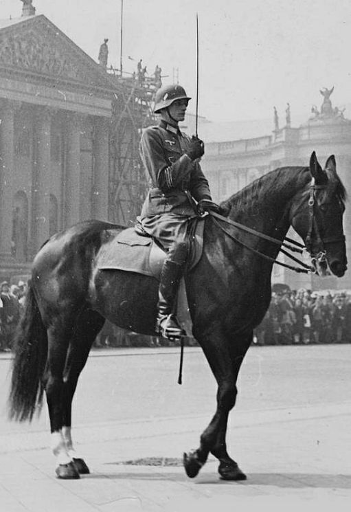 German war horse