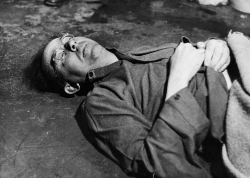 Himmler after