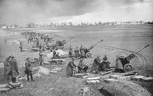 Bundesarchiv_Bild_183-E0406-0022-012,_Artillery every four metres