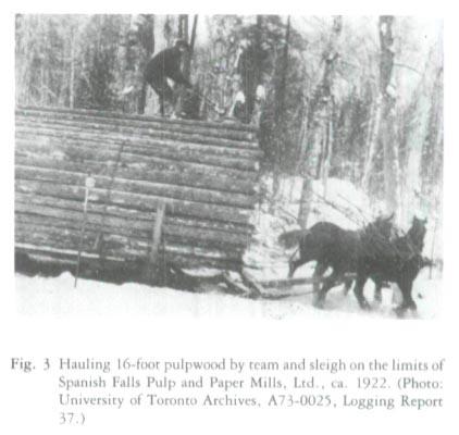 hauling trees